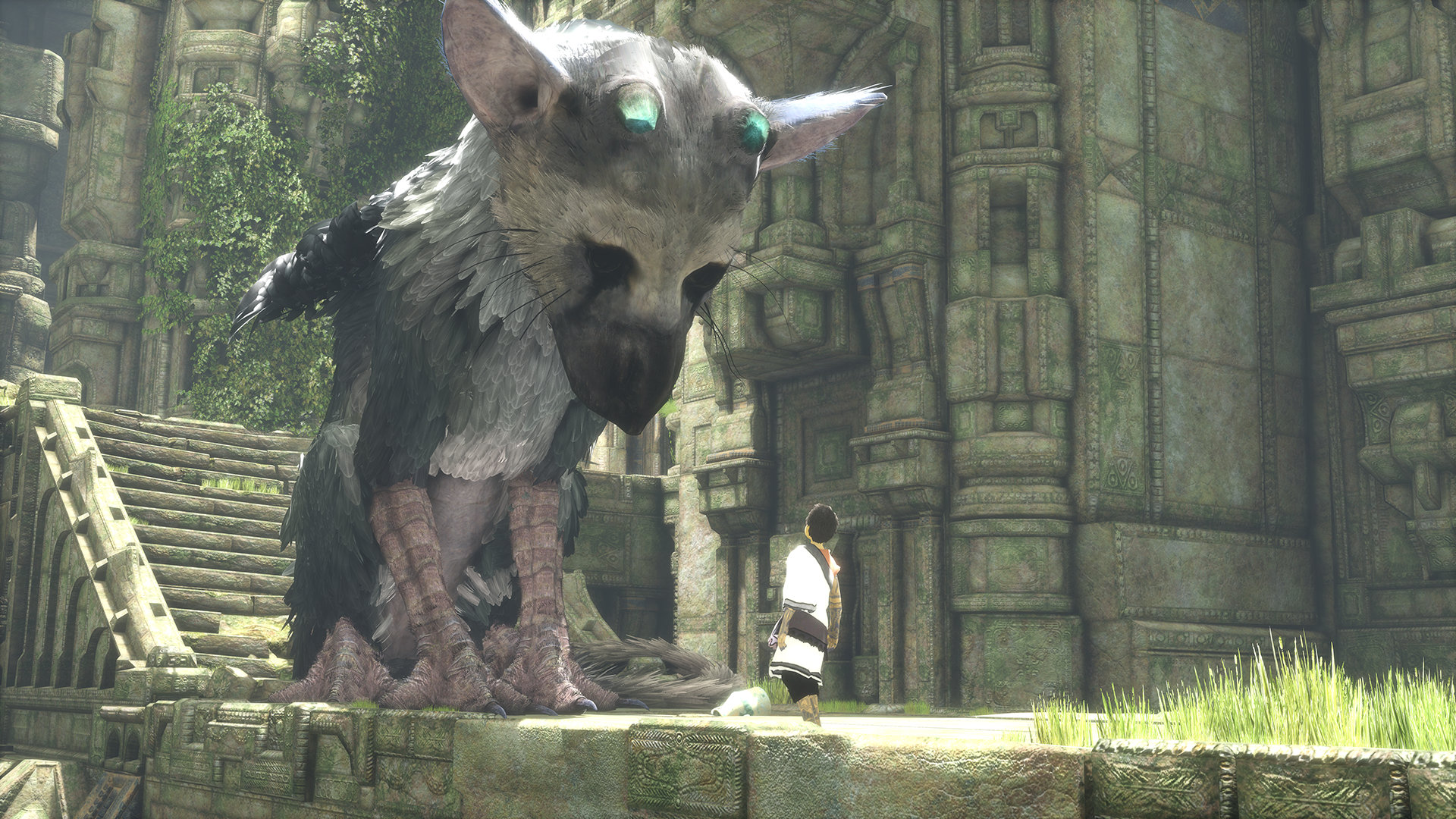 IM1787: The Last Guardian