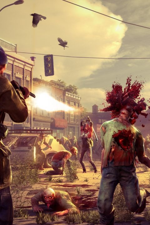 IM2203: State of Decay 2